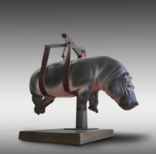 Il peso dell' ippopotamo sospeso