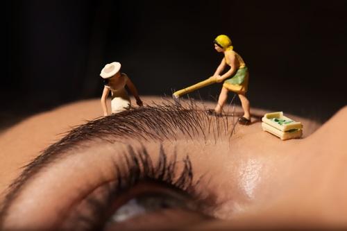 L'atelier du sourcil