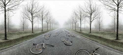 Bicyclettes abandonnées, 2006