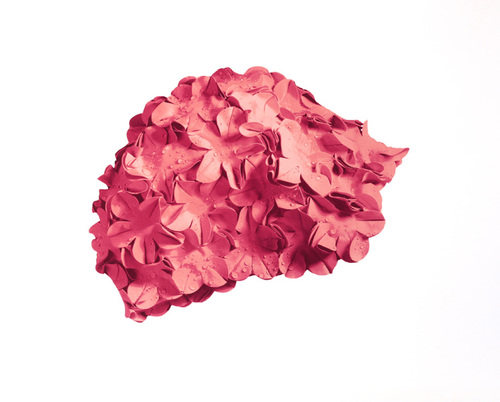 Pink cap on white background, 2015